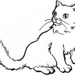 planse-de-colorat-pisica-fise-de-colorat-pisici-planse-de-colorat-pisica-desene-de-colorat-pisici-9